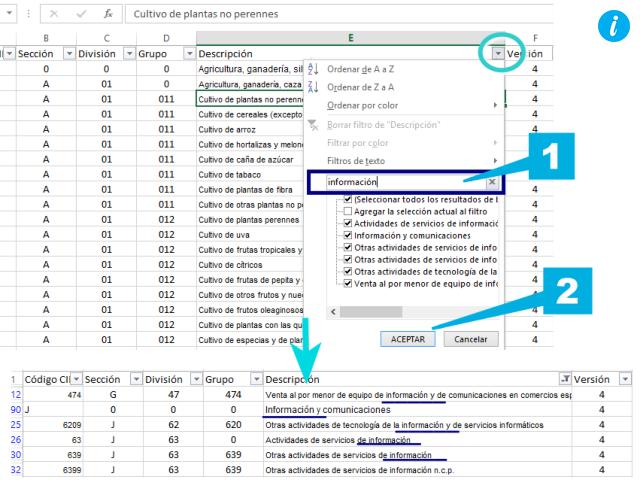 Buscar dentro de filtros en Excel