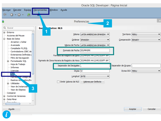 Configurar formato en Oracle SQL Developer